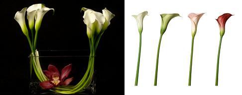 wedding flower arragements