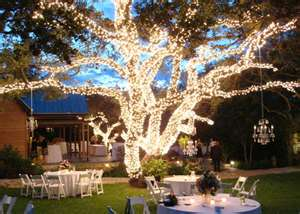 Google Image Result For Http Www Wedding Reception Decoration Ideas Files Outdoor Omwall Com Jpg One Day